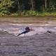 Prone River Surfing